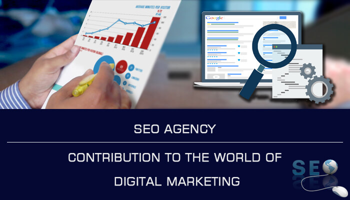 SEO Agency: Contribution to The World of Digital Marketing