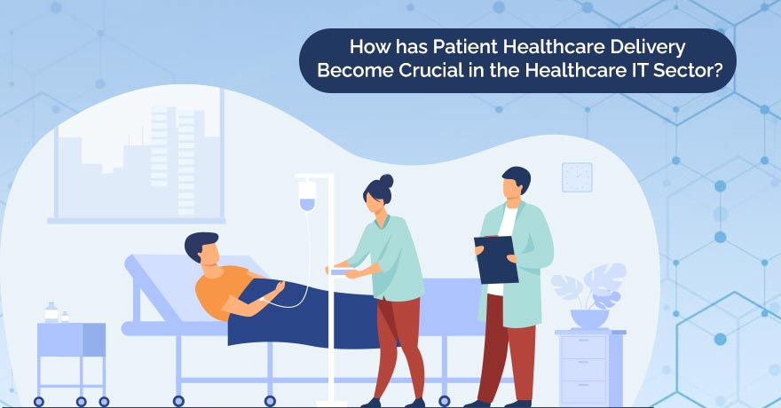 Patient Healthcare Delivery and its Importance in the Healthcare IT Industry