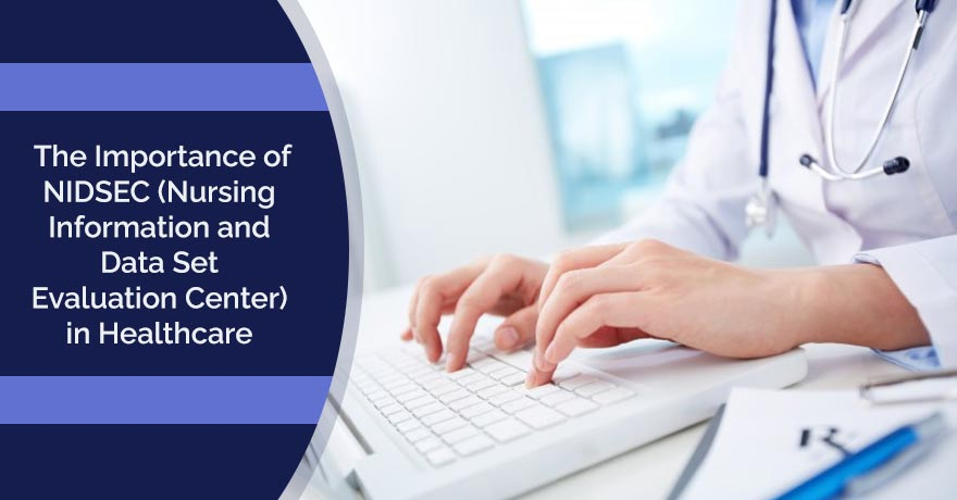 The Importance of NIDSEC (Nursing Information and Data Set Evaluation Center) in Healthcare